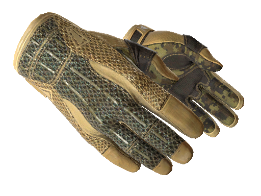 Sport Gloves   Arid (Factory new)