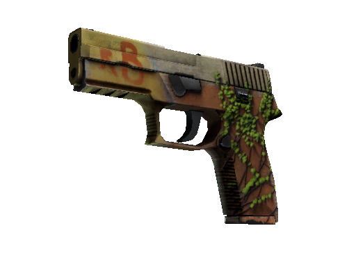 P250 | Inferno (Field-Tested)