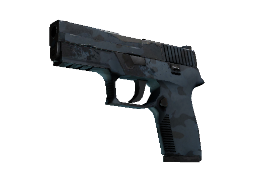 P250 | Forest Night (Field-Tested)
