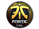 Sticker   Fnatic (Foil)   Katowice 2019