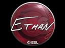 Sticker   Ethan   Katowice 2019