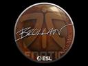 Sticker   Brollan   Katowice 2019