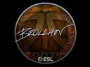 Sticker   Brollan (Foil)   Katowice 2019