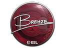 Sticker   Brehze   Katowice 2019