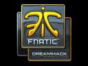Sticker   Fnatic (Foil)   DreamHack 2014