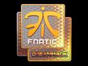 Sticker   Fnatic (Holo)   DreamHack 2014