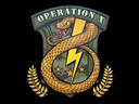 Sticker   Badge of Service