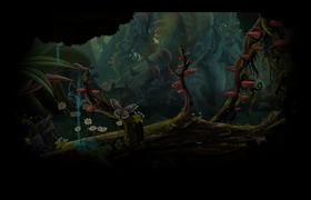 Forest bottom