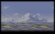 Lavender Field - Day