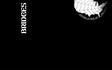 BRIDGES (Black)
