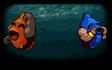 Orange & Blue Duo