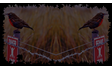 Long-tail Meadowlark