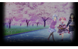 Season of Sakura